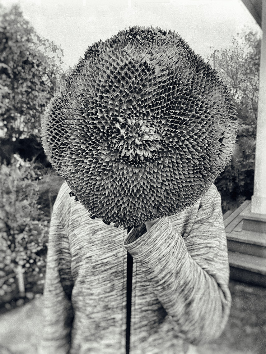 Conceptual photography Portland - Black and white image of a  boy holding a large sunflower